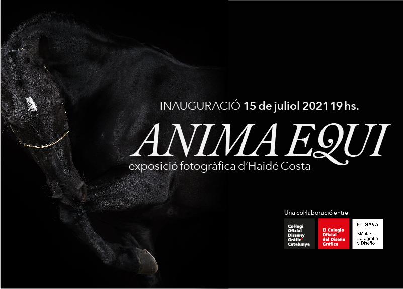 ANIMA EQUI - Exposició fotogràfica d'Haidé Costa